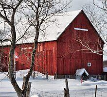 Big Sky Farm. by Bill Marsh