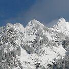 Fall Snow above Glacier, WA by rferrisx