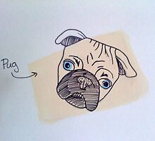 Pug by Allison Aboud