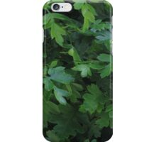 Natural fresh green leaves iPhone Case/Skin