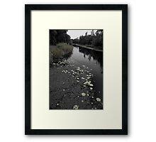 Green Lilies Framed Print