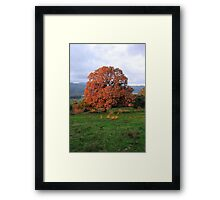 The Warmth of a Winter Sunrise  Framed Print