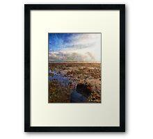 beach rock Framed Print
