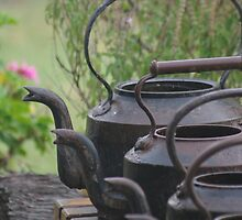 Working Kettles by jensw61
