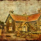 The Farmhouse by Catherine Hamilton-Veal  ©