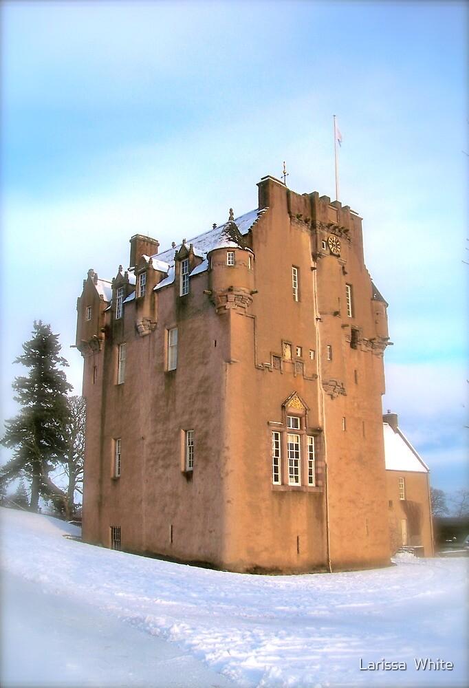 Crathes Castle by Larissa  White Brown