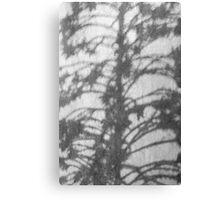 ikebana 4 Canvas Print