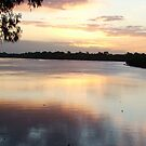 River Sunset - Bundaburg, QLD by Janice E. Sheen