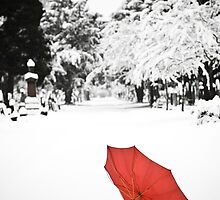 Umbrella in the Snow by eyeshoot