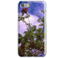 Royal Poinciana in Bloom iPhone Case/Skin