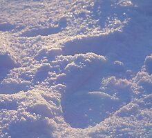 Snow Fun by Nik Watt