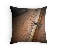 drainage is essential Throw Pillow