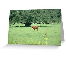 luscious green pasture Greeting Card