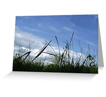 Getting Down to Nature Card Greeting Card