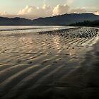 Playa Tambor by jimmy hoffman