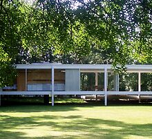 Mies van der Rohe Farnsworth House by Brian Gaynor