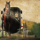 Pennsylvania - Amish Country by Dyle Warren