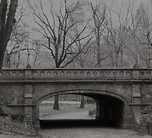 Central Park Bridge, NYC by Henri Irizarri