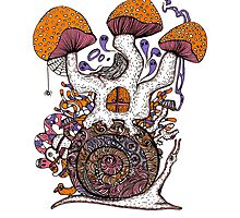 The Snail House Photographic Print