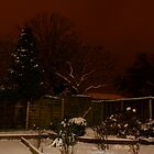 more snow tonight by lurch