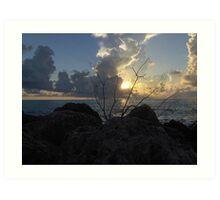 Miami Beach Sunrise 2 Art Print