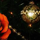 Ornament of Gold & Rose of Orange by dreamNwish