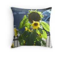 sunny days and sunflowers Throw Pillow