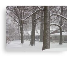Snowy Sherry Canvas Print