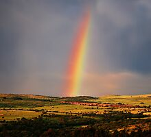 Over The Rainbow by laureenr