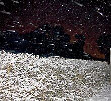 Cosmic Snow! by LisaRoberts