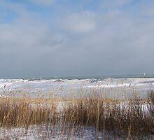 Lake Huron Winter Shoreline by MichiganGirl