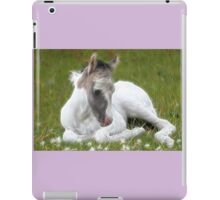 Many Small Childs Dream.  iPad Case/Skin