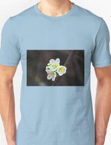Painted Blossoms Unisex T-Shirt