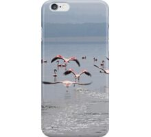 Take Off !  Flamingos at Lake Nakuru, Kenya iPhone Case/Skin