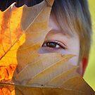 Peek Leaf by Bob Larson