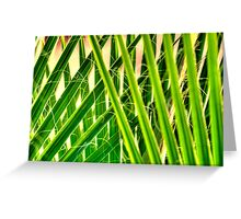 Green Spike Fan Greeting Card