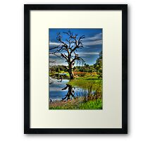 Reach or The Sky - Wonga Wetlands - The HDR Exp Framed Print