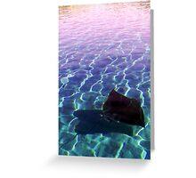 Stingray at Sunset - Parker Point, Rottnest Greeting Card