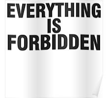 EVERYTHING IS FORBIDDEN. Poster