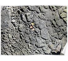 Rock art Poster