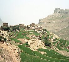 a large Yemen