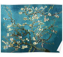 Blossoming Almond Tree, Vincent van Gogh.  Poster