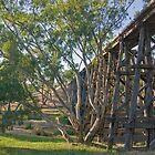 Pyalong Rail Bridge by mspfoto
