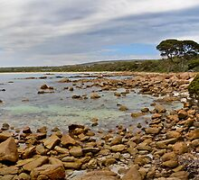 Bunker Bay panorama by Richard Majlinder