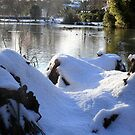 Lake and snow by Roxy J
