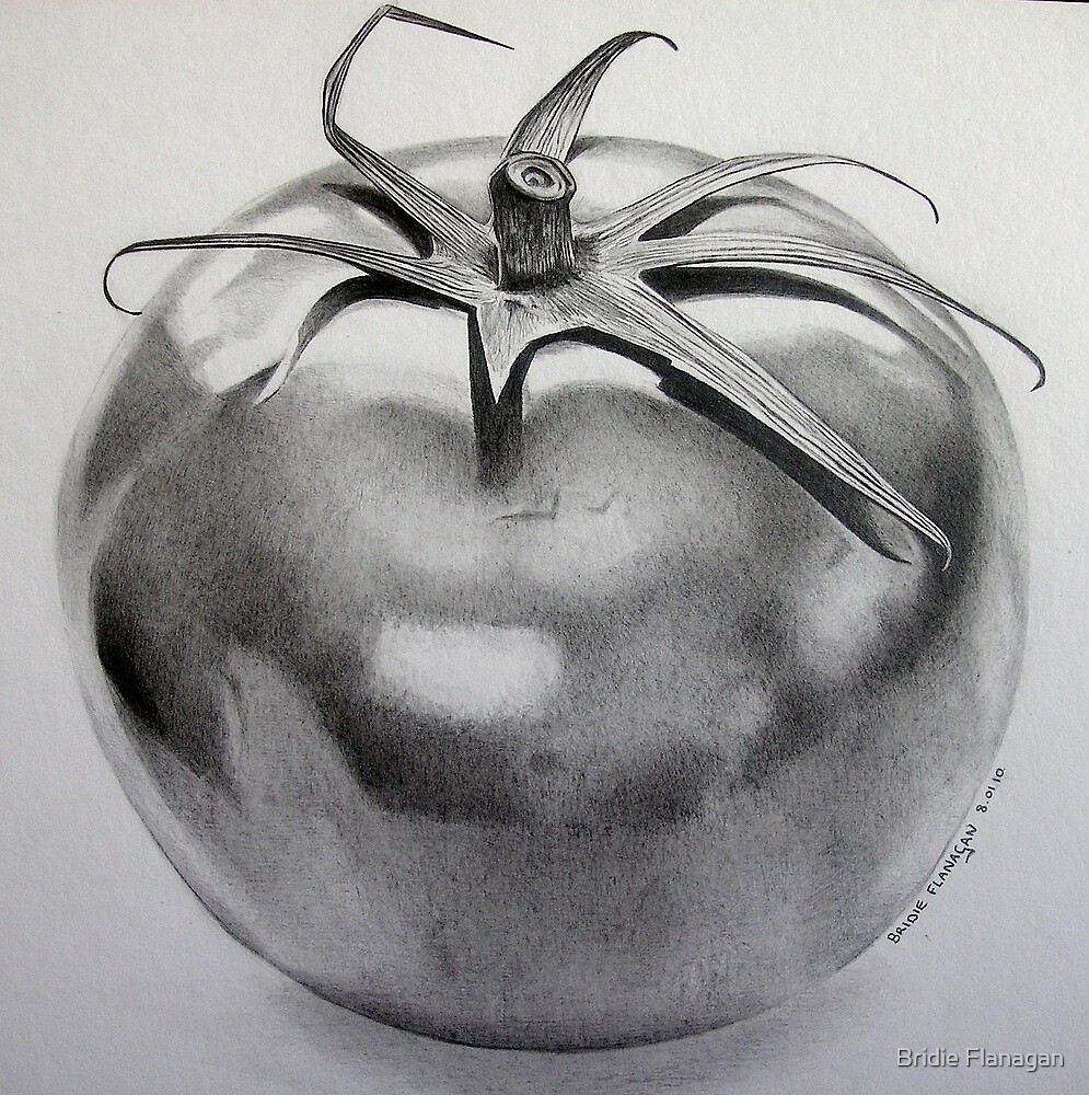Tomato by Bridie Flanagan by Bridie Flanagan