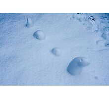 Snow Worm! Photographic Print