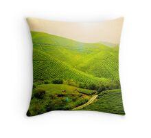 Tea Plantation - Malaysia Throw Pillow