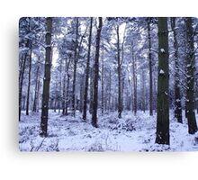 Snowy Woodlands Canvas Print