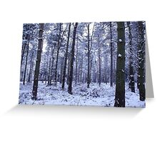 Snowy Woodlands Greeting Card